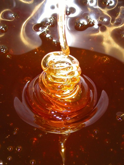 honey%20dripping