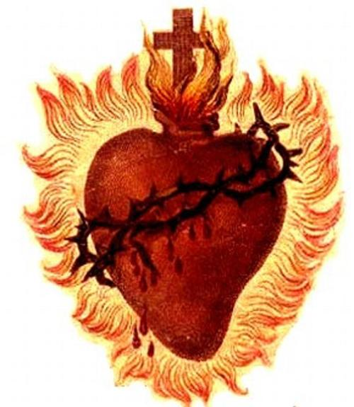 heart_the_Sacred_Heart_of_christ