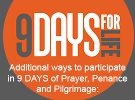 9-days-sidebar