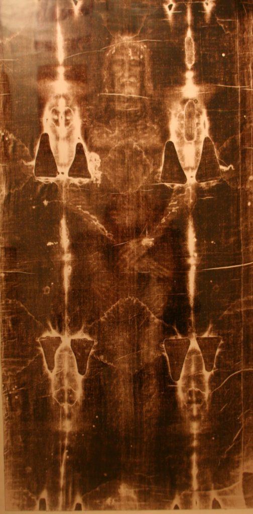 shroud-full-image-504x1024